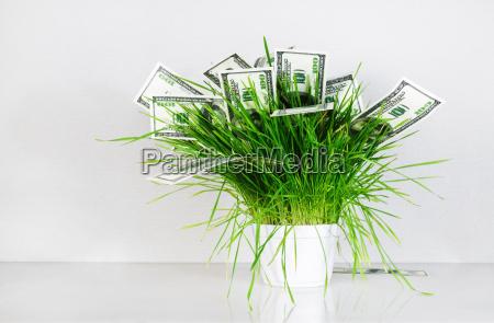 geld und gras