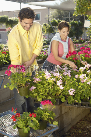 mature couple selecting flower plants