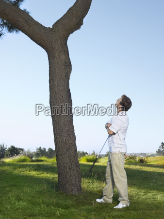 golfer looking at ball on tree