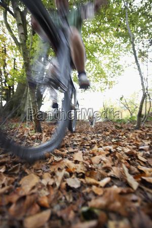 hund der mann auf mountainbike jagt