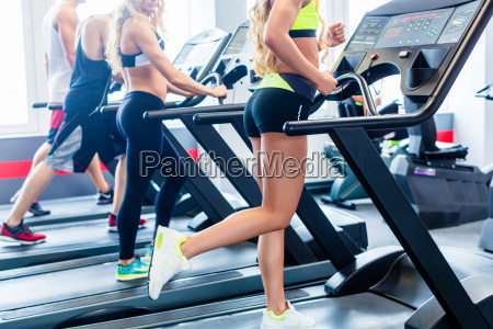 treadmill group exercising in fitness gym