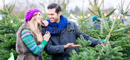 frau und mann die weihnachtsbaum auf
