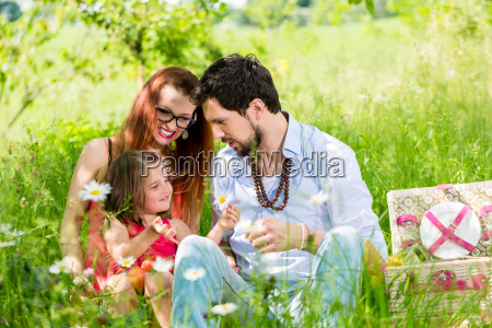 family having picnic on meadow with