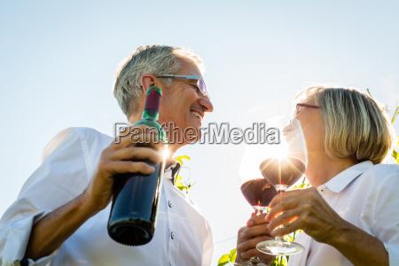 senior couple toasting with wine glasses