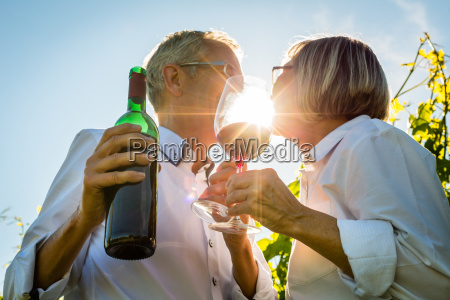 senior couple toasting with wine glasses