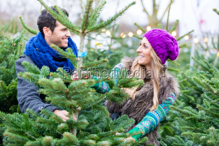frau und mann kaufen weihnachtsbaum auf