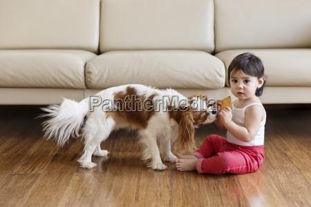 toddler girl sitting on wooden floor