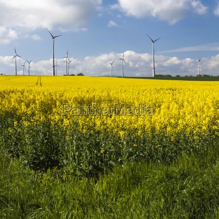 gewinnung erneuerbarer energie