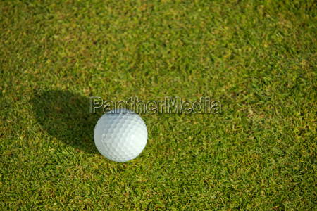 elevated view of golf ball on