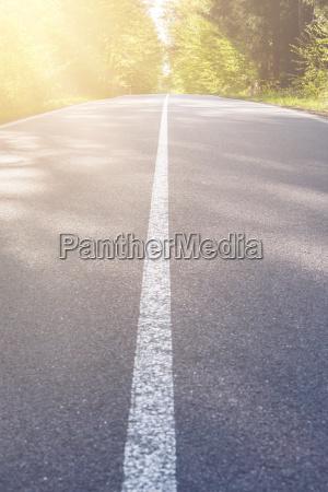 landasphaltstrasse mit baum und sonnenuntergangsflare