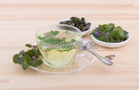 cup with tea from ground ivy