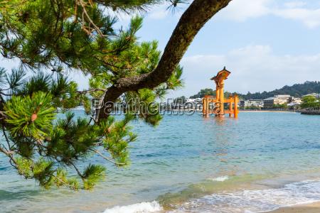 floating torii gate in hiroshima of