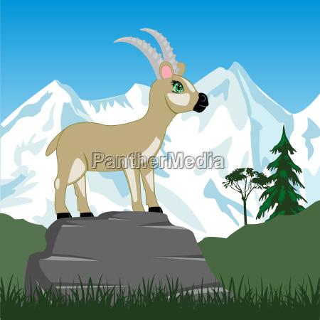wildes saegepferd in berg