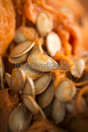 zumachen schliessen orange apfelsine pomeranze essen