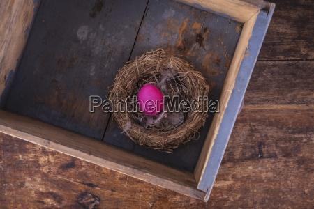 ein rosa osterei in einem nest