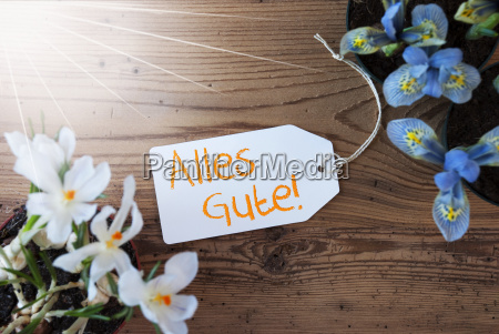 sunny flowers label alles gute means