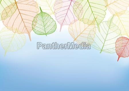 filigree colorful leaves illustration