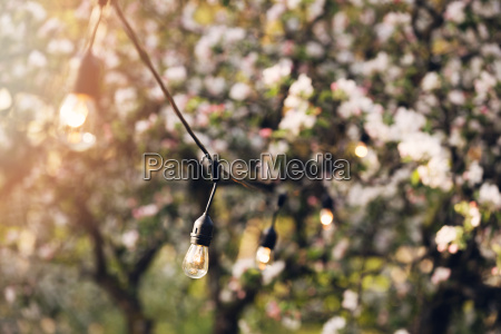 outdoor party string lights hanging in