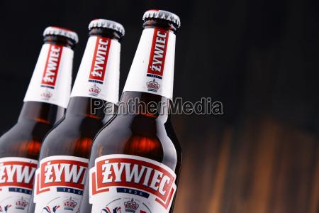 flaschen zywiec bier