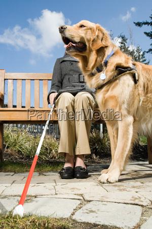 blinde frau und ein blindenhund