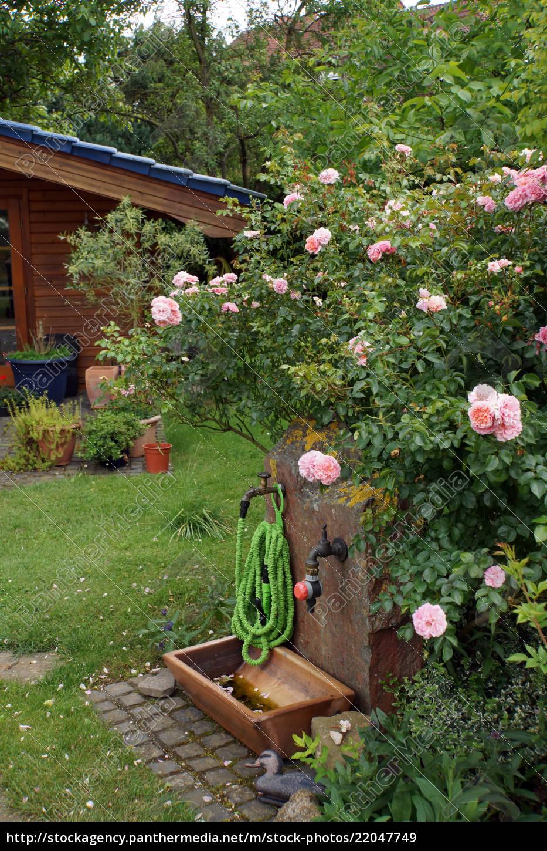 Lizenzfreies Bild 22047749 - Schrumpfschlauch an der Wasserstelle im Garten