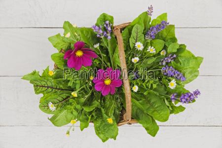 edible flowers leaves and herbs in