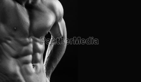 der torso der attraktiven maennlichen bodybuilder