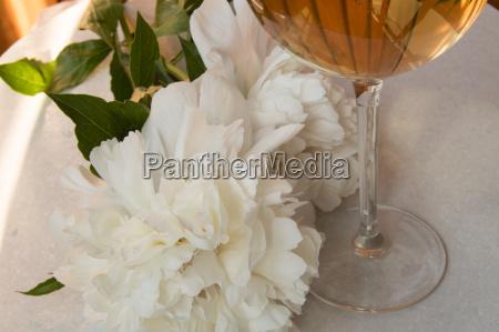 weisswein im glas und pfingstrosenblueten romantisches