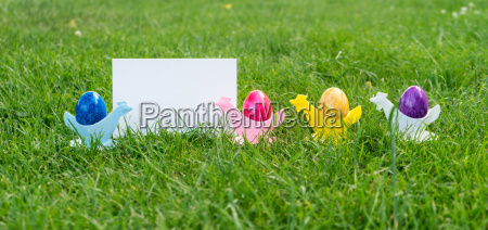 colorful easter eggs in egg cups
