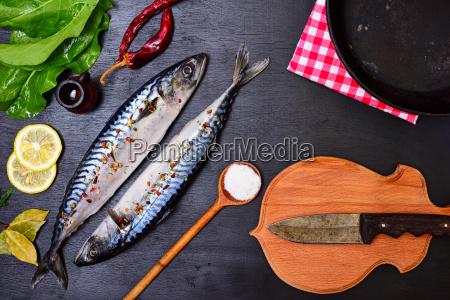 essen nahrungsmittel lebensmittel nahrung tier angeln