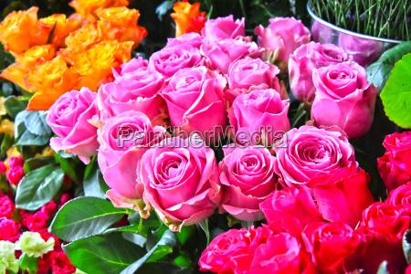 rosen im blumenladen