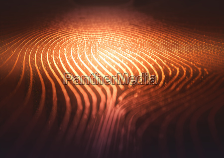 fingerprint binary code labyrinth