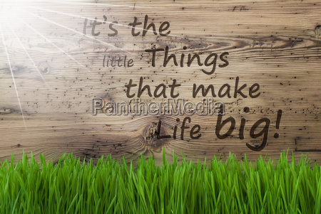 sunny wooden background gras quote little