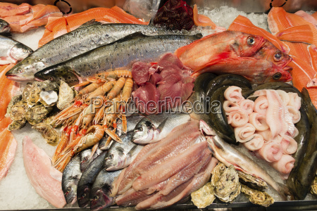 essen nahrungsmittel lebensmittel nahrung horizontal garnele
