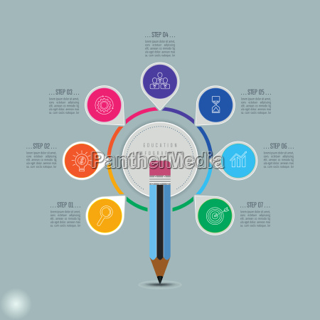education infographics template 7 step option