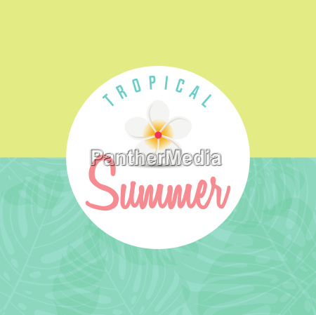 trendy summer tropical leaves summer background