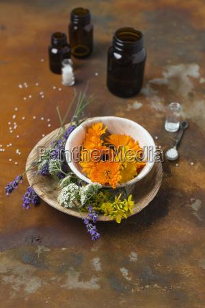 blossoms of medical plants medicine flasks