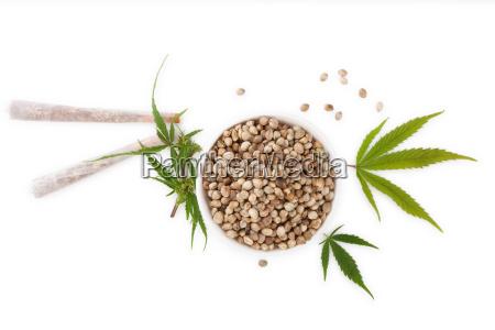 marihuanasamen mit gelenken