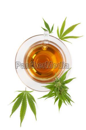 cannabis kraeutertee