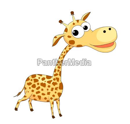 cute funny giraffe
