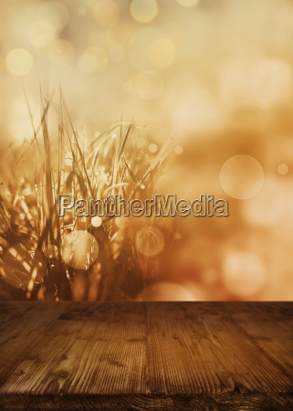 abstract autumn landscape with empty wooden