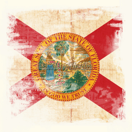 grunge flagge von florida usa