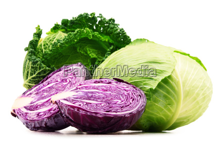 fresh organic cabbage heads isolated on