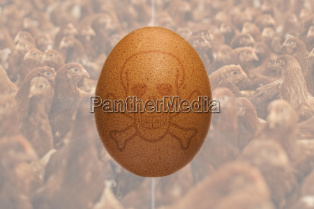 brown chicken egg with skull to