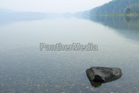 blau baum baeume park stein nebel