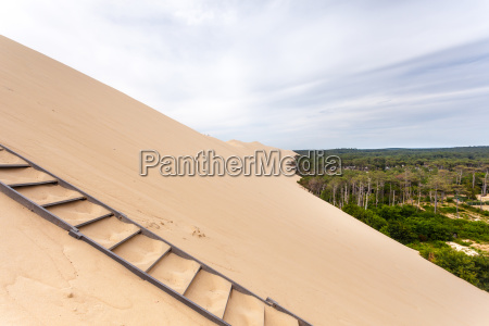ladder to the dune of pilat