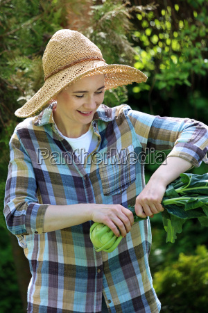 kohlrabi female gardener collects spring vegetables