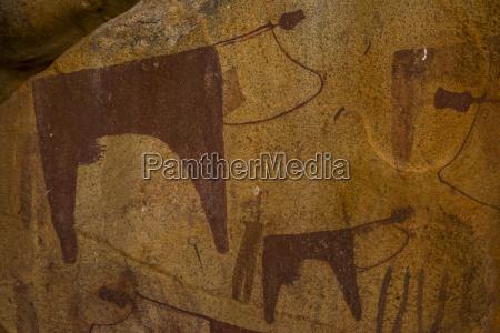 hoehlenmalereien in lass geel hoehlensomalilandsomaliaafrika