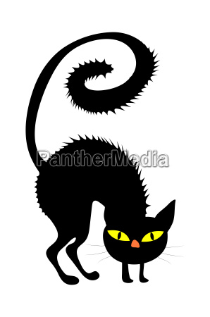 halloween gruselig beaengstigend hexe katze vektor