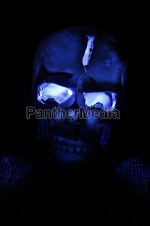 menschlicher schaedel aus kunststoff mit blau